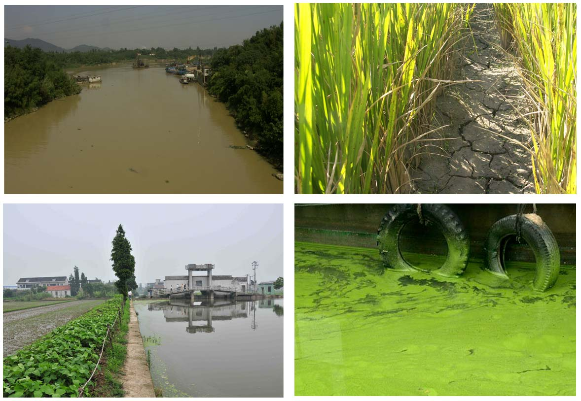 Development and application of a non-point sources pollution